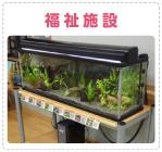 熱帯魚、水槽レンタル、水槽リースのペットショップ ペットネット