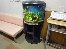 碧南市 病院様 60cm