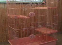 ネコちゃん用の特別室