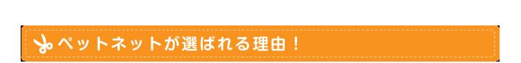 ペットネットが選ばれる理由! 刈谷、安城、大府、東浦町のトリミング、ペットショップ PETNET
